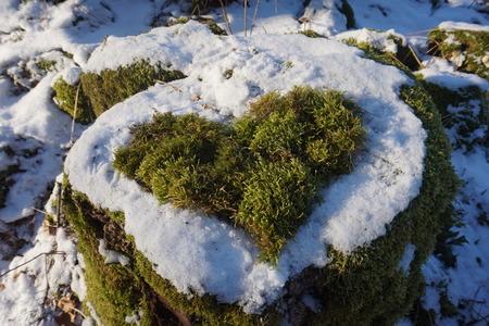 Spring feeling growing heart Editorial