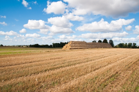 field after harvest on mazury Stock Photo - 15600493
