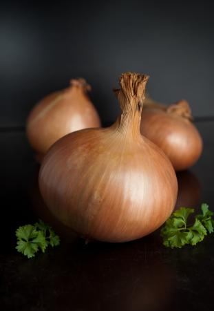 Organic onion on the dark background