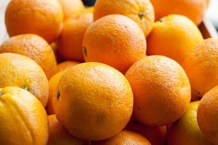 Citrus fruit in the natural daily light