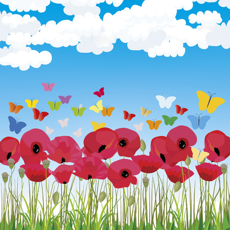 Spring wallpaper with red poppies and sky background