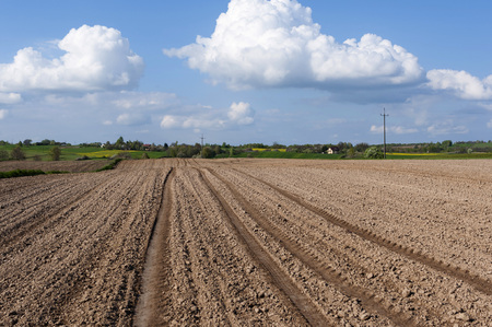 lublin: Beautiful landscape with plowed fields and rural road. Agriculture of Poland.