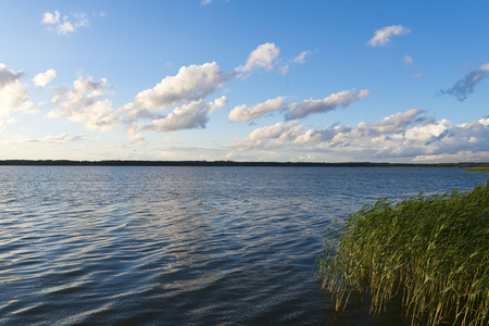 Summer landscape - View of the lake Ros Stock Photo