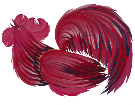 natural cock: painted in bright beautiful cock gouache paints on white background with natural brushes