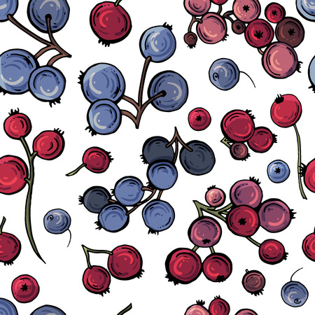 Vector colored berry background, red and black currant berries