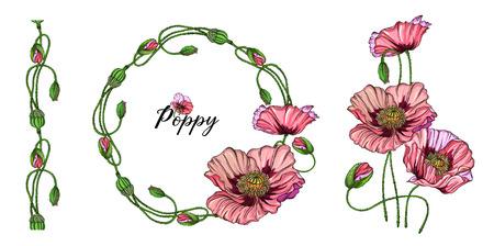 Fleurs lumineuses colorées de vecteur, bourgeons, feuilles de pavot rose. Vecteurs