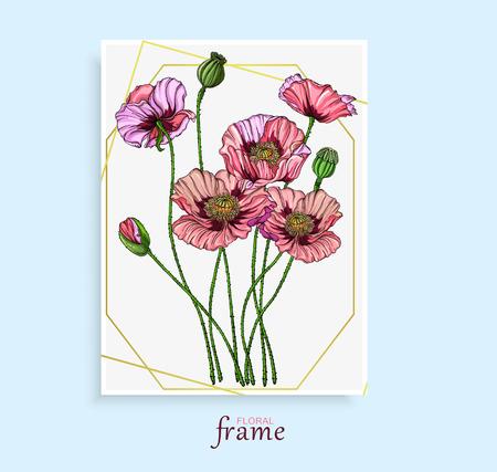 Fleurs lumineuses colorées de vecteur, bourgeons, feuilles de pavot rose. Fleurs de pavot.