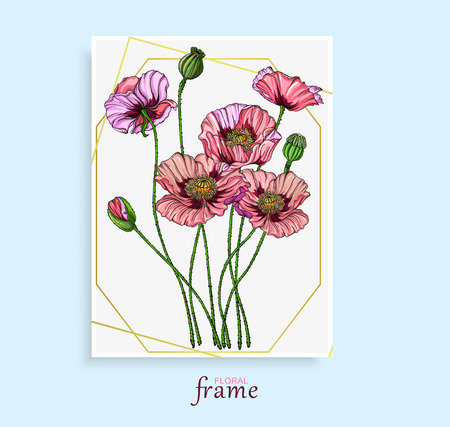Vector colored bright flowers, buds, pink poppy leaves. Poppy flowers.