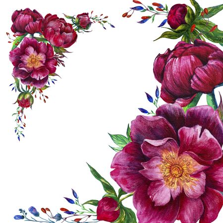 Bright painted watercolor compositions with peony flowers. Botanical illustration