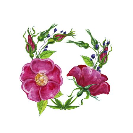 Floral watercolor sets with pink wild rose flowers. Botanical.