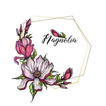 vector bright flower collection of Magnolia flowers Illusztráció