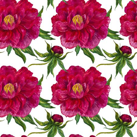 watercolor floral composition, bright colors of the peony. Botanical.