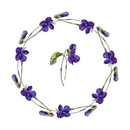 Vector floral wreath of violets flowers. Violet fragrant