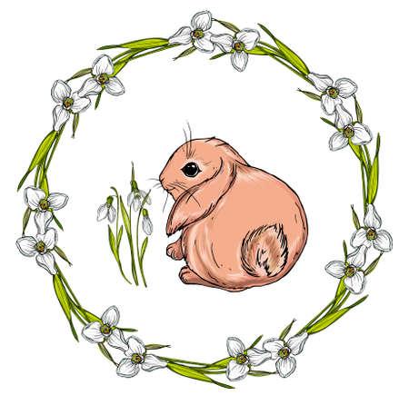 Vector isolated cartoon hare. Ilustrace