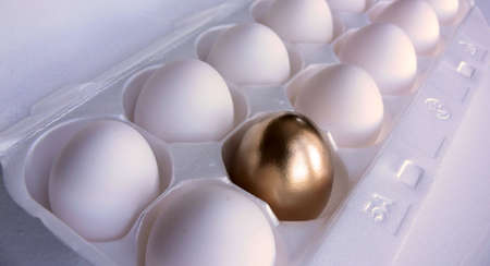 Dozen white eggs, with one of the eggs in the foreground painted a bright metallic gold.  photo
