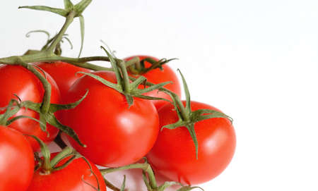Tomatoes on the vine, on a white table top. Stock Photo