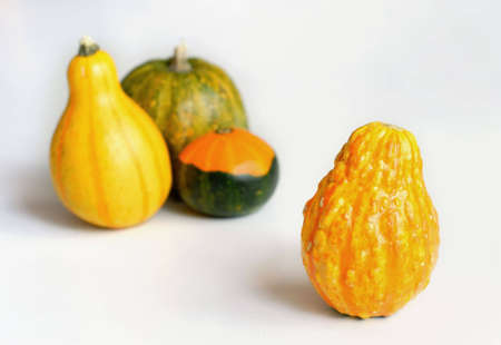 Decorative gourd on a white table, with a Group of 3 more gourds blurred in the background. Stock Photo - 1798279