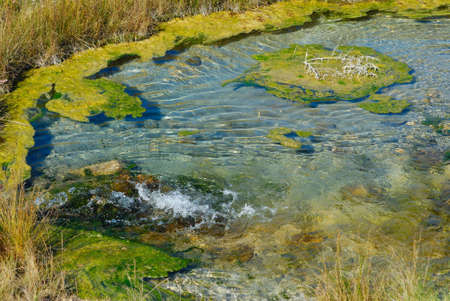 Artisian well which feeds Oak Hammock Marsh, Manitoba. Stock Photo