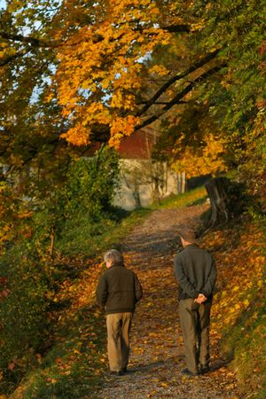 An elderly woman and your son walk along a forest path in autumn. Banque d'images