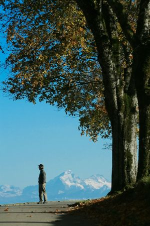A man contemplates a distant chain of mountains, while standing on a tree-shaded road, in Fall. Banque d'images