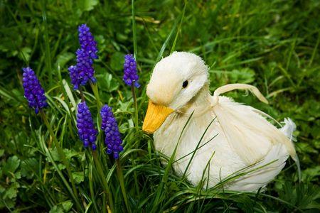 Une main de canard, faites de paille et de plumes, à côté de fleurs, au milieu d'herbes hautes. Banque d'images - 2817055