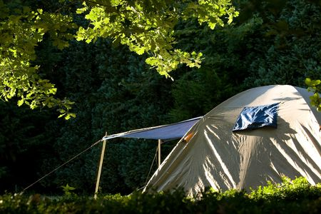 A silver dome tent with a rain flap, in a forest, bathed in  the morning or evening sunlight.