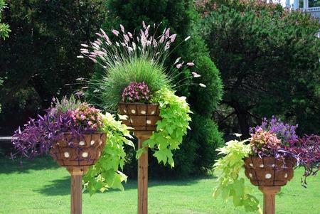 three plant holders in garden photo