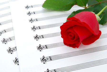 rose and music sheets photo