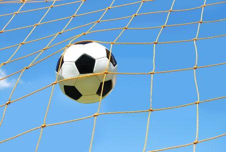 ネットでサッカー ボール