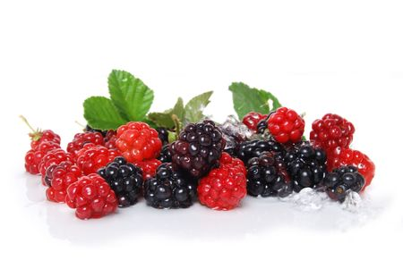 berries: berries and water white background Stock Photo