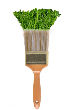 paints: paintbrush with grass paint on a white background