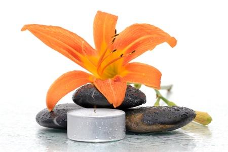 with orange and white body: flor masajes de piedras sobre fondo blanco