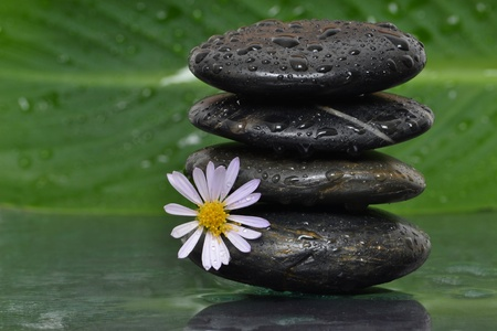 wet stacked spa stones Stock Photo