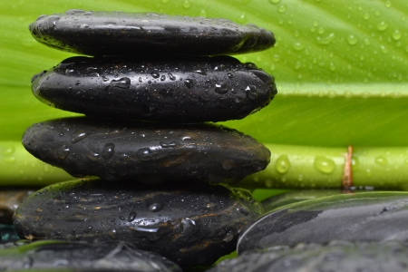 mind body soul: wet black spa stones and bamboo plant