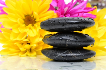 black stones with flowers Stock Photo - 13670826