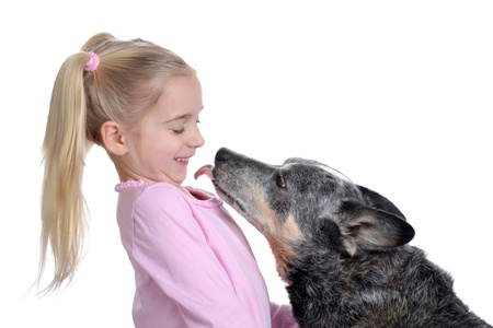 licking: dog licking young girl