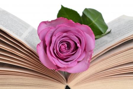 book: pink rose bookmark lying in book