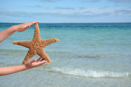child holding a starfish at the beach