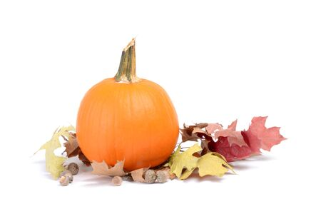 autumn leaves and a pumpkin isolated white background fall concept