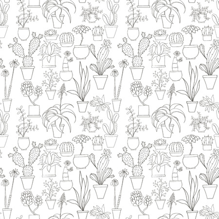 variety: Seamless cactus pattern can be used for wallpaper, website background, wrapping paper. Cactus natural bright pattern. Summer design. Flower concept.