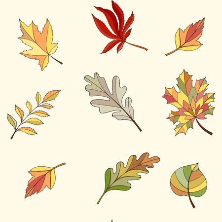 sienna: Seamless leaves pattern can be used for wallpaper, website background, wrapping paper. Autumn bright pattern. Leaf design.