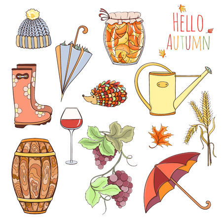 cask: Set of autumn elements can be used for can be used for cards, invitation or website. Design elements of rubber boots, hat, grapes, vine glass, wine cask, jam, watering can, umbrella, jam, spikelet