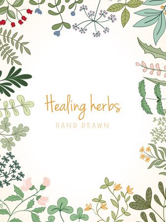 Hand Jahrgang Hintergrund von Heil organischen Heilkräuter gezogen. Vector medizinische Pflanzen und Kräuter-botanischen flowerelements können für Banner-Vorlage, Karten, Flyer, Banner, Verkauf, Website verwendet werden
