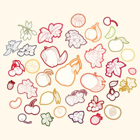 Set von Vektor-Illustration von Früchten und Beeren Standard-Bild - 78035199