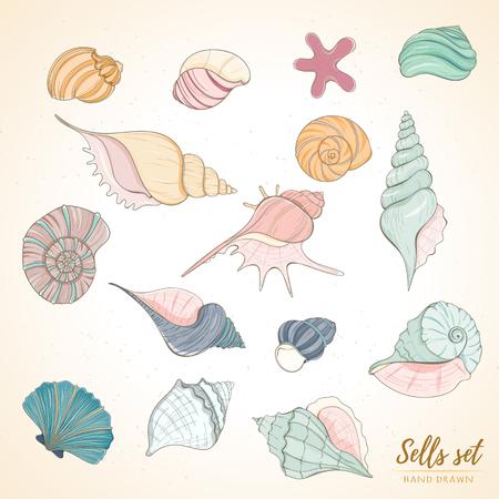 貝殻の楽園休日海洋セット