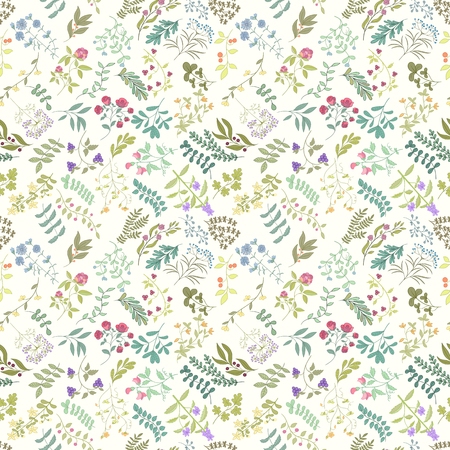 Seamless pattern of flowers, herbs and leaves