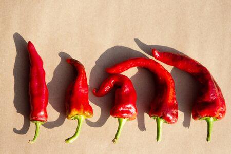 Red hot chili pepper on craft paper. Top veiw. Standard-Bild
