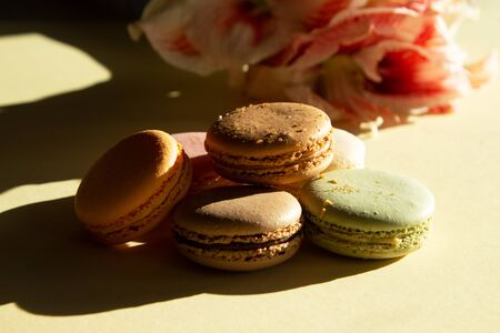 Contemporary composition pastel macarons and flower Amaryllis on light yelow backgraund with dark shadow.