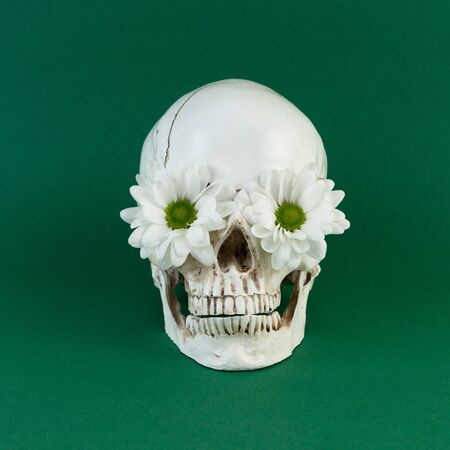 High contrast image of a skull with flowers in the eye sockets on green background.
