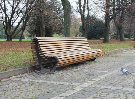 Bench made of wooden bars in a city park Stockfoto - 134871030